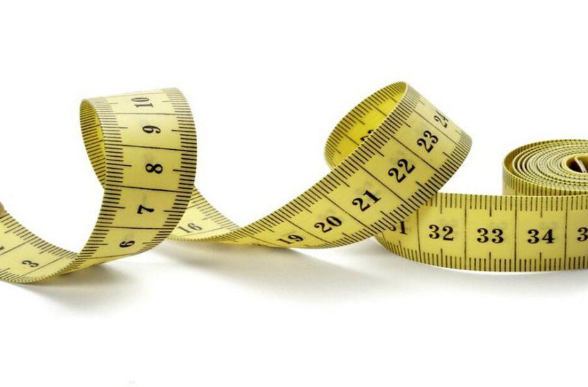 سایز بندی زالو و اندازه زالو های رایج در بازار